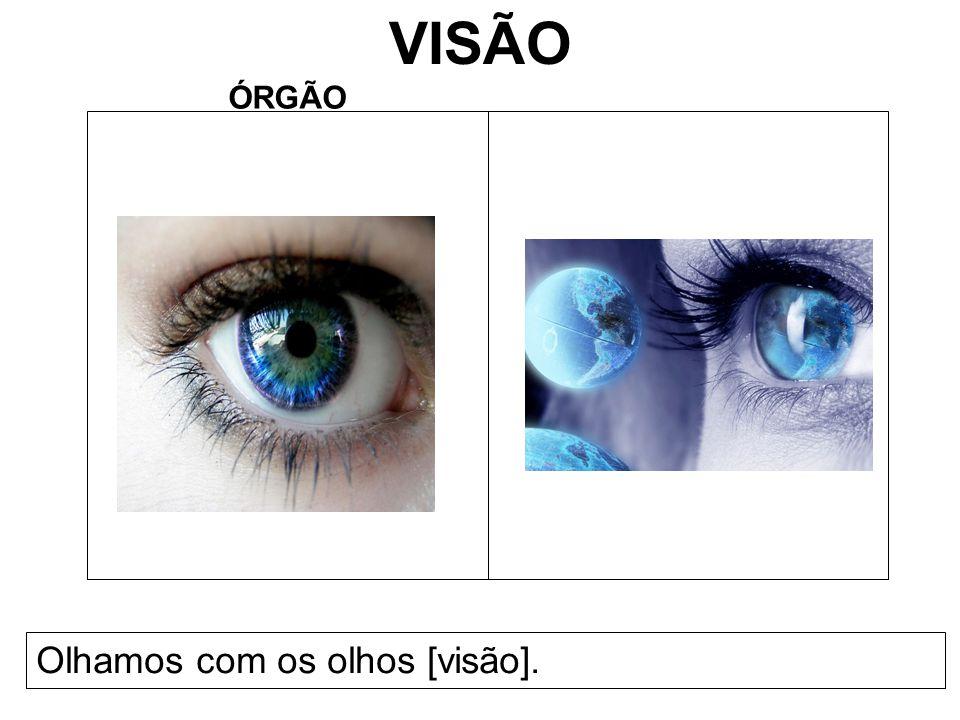 VISÃO ÓRGÃO Olhamos com os olhos [visão].